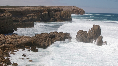 Coastal Cliffs, Elliston, Eyre Peninsula, Malone