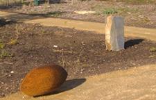 Bulto Ityangga-Awakening, growing Burro mandi Malone 2009